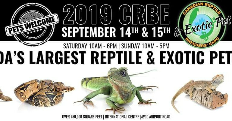 One more day until the CRBE!